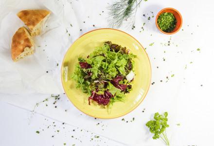 Selekcija zelenih salata